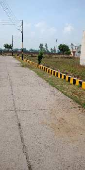 Best 5 Marla Plot (1.20 Lac Per Marla) In Gated Colony In Jalandhar