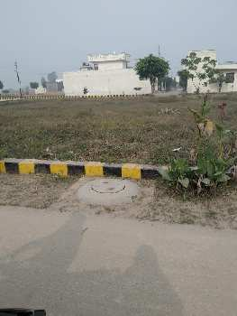 4.37 Marla (1.20 Lac Per Marla) Plot In Gated Colony Jalandhar