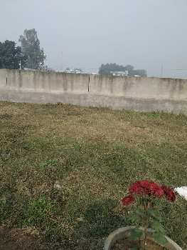 20'ft X 40'ft Plot For Sale In Jalandhar