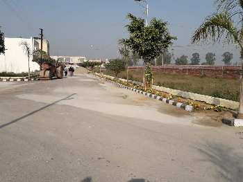 Great Investment In 3 Side Open Plot In Jalandhar