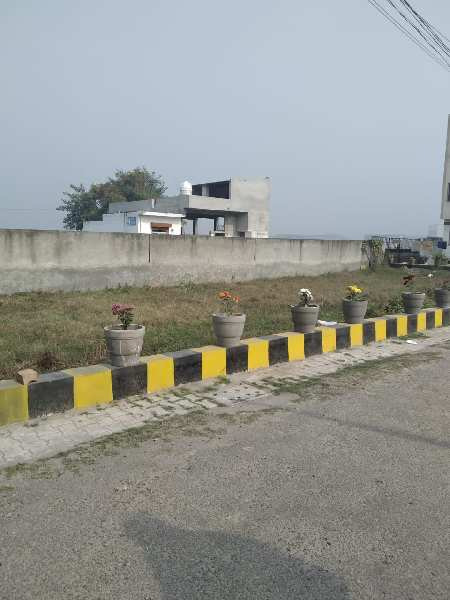 25'FT FRONT * 40'FT BACK PLOT IN JALANDHAR