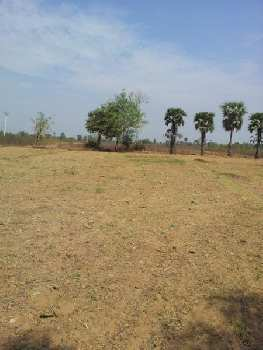 200 Ares Agricultural/Farm Land for Sale in Dataganj, Budaun