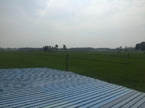 51 Acre land