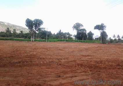 136 Sq Yard Plot are available For Sale in Rohtak