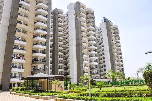 3 BHK Flat For Sale In Omicron 1, Greater Noida