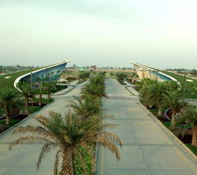 100 Sq. Yards Residential Plot for Sale in Yamuna Expressway, Greater Noida