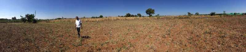 Agricultural/Farm Land for Sale in Maharashtra