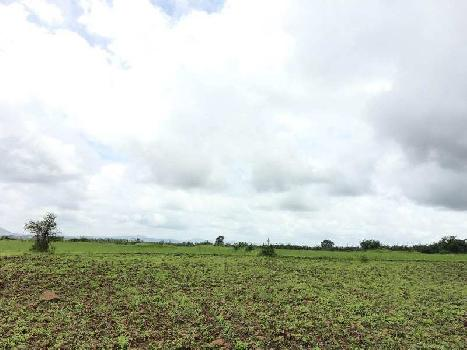 Agricultural/Farm Land for Sale in Peth Road, Nashik