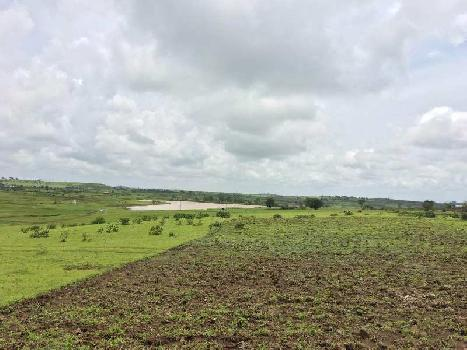 10 Ares Agricultural/Farm Land for Sale in Dindori, Nashik