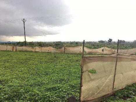 Prime location Land NEAR Palkhed MIDC FOR SALE