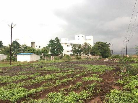 Prime location Land NEAR Palkhed MIDC FOR SALE