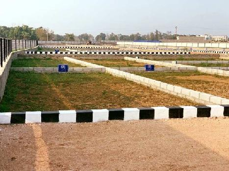 1000 Sq.ft. Residential Plot for Sale in Taramandal, Gorakhpur