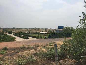 Plot for sale Yamuna expressway harit  vatika projects plot 100 sqyds 12.50 lac