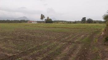 1400 Sq. Feet Commercial Lands & Plots for Sale at Bilaspur