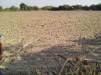 Residential Plot for Sale in Bilaspur