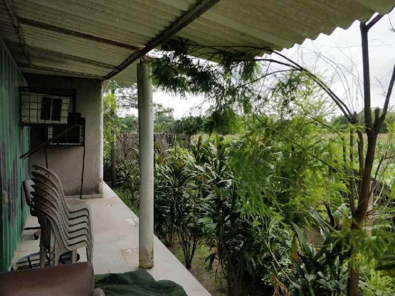 7 Bigha Farm House for Sale in Sector 135, Noida