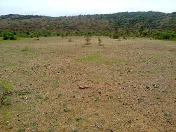Residential Land / Plot for Sale in Ratlam