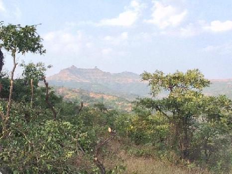 Agricultural/Farm Land for Sale in Taluka Velhe, Pune