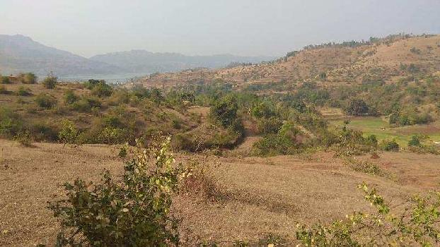 Agricultural/Farm Land for Sale in Velhe, Pune