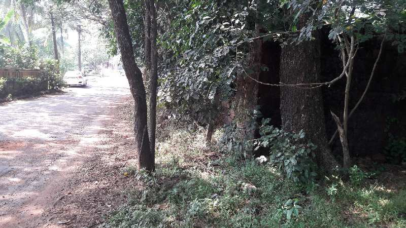 LAND FOR SALE IN SIOLIM NORTH GOA