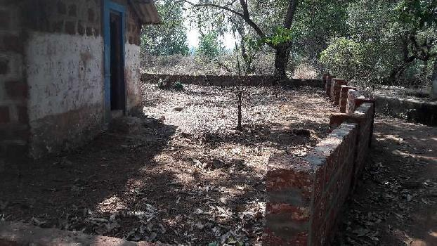 Property for sale in anjuna