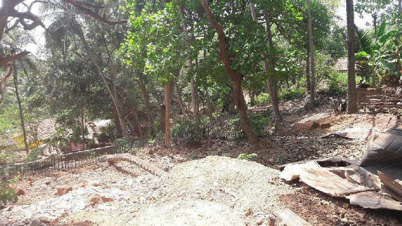 3700 sqmt property in S2 zone for sale in Anjuna