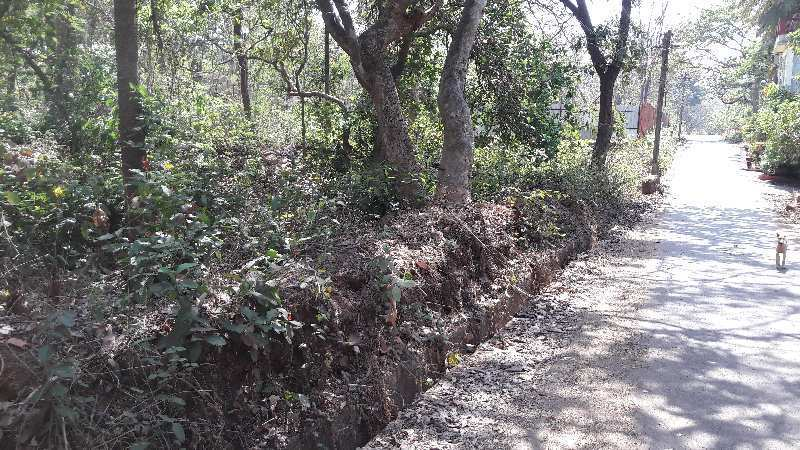 1 acre property with sanad for sale in Siolim Goa
