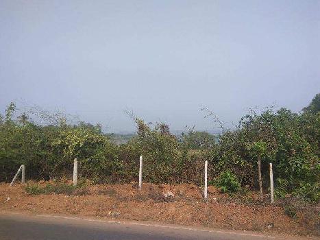 Residential Plot for Sale in Morjim, Goa