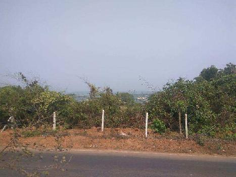 Residential Plot for Sale in Morjim, Goa