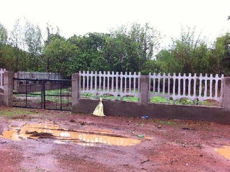 Residential Plot for Sale in Chorao, Goa