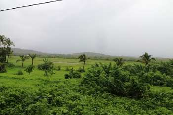 1050sqmt Plot for Sale in Salvador do mundo, Porvorim, North-Goa.(1.36Cr)