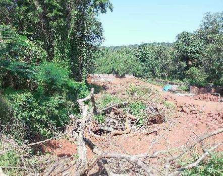 2225Sqmt Plot for Sale in Salvador do mundo, Porvorim, North-Goa.