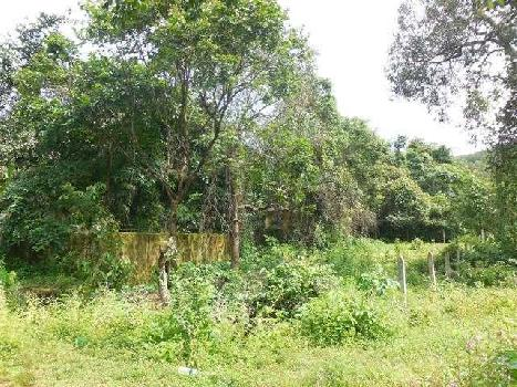 300sqmt Plot for Sale in Siolim, North-Goa. (45L)