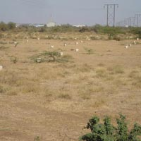 Residential Land / Plot for Sale in Rajkot