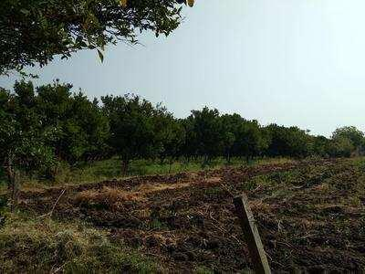 5 Bigha Agricultural/Farm Land for Sale in Gift City, Gandhinagar