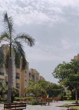 Fully Furnished Flat for Rent at Thaltej - La Habitat