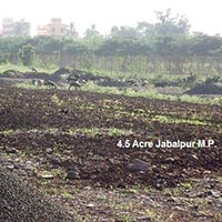 Agricultural/Farm Land for Sale in Jabalpur