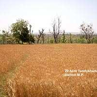 Agricultural/Farm Land for Sale in Panna