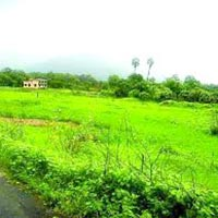 Agricultural/Farm Land for Sale in Seoni
