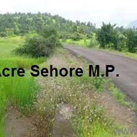 Farm Land for Sale in Sehore