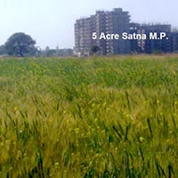 Agricultural/Farm Land for Sale in Satna