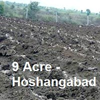 Agricultural/Farm Land for Sale in Hoshangabad