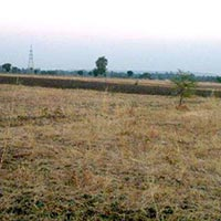 2100 Acres Land for Agriculture