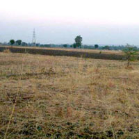 4200 acres Land for agriculture available for Sale