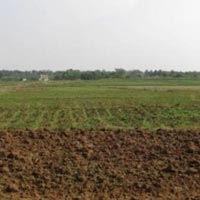 27 Acres Land for Agriculture