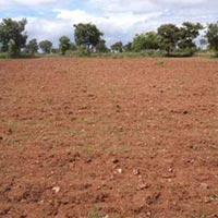 10 Acres Land for Agriculture