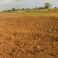 40 Acres Land for Agriculture