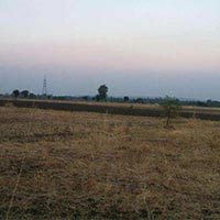 100 Acre Land for Agriculture