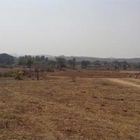 104 Acres Land for Agriculture