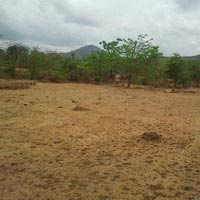 3500 acres Land for agriculture